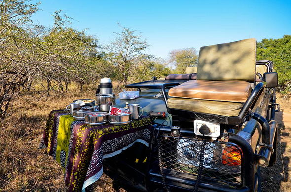 Stop for coffee or tea on a game drive.