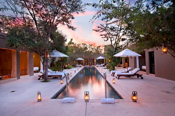 Pool area at the luxury Royal Malewane Lodge.