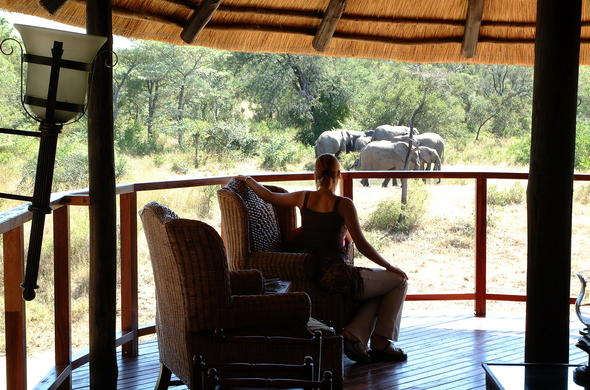 Guest admiring elephants from the deck of Shumbalala Game Lodge.